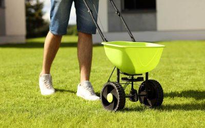 Organic vs. Chemical Lawn Fertilizers